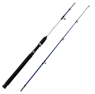 Jig Spinning Fishing Rod