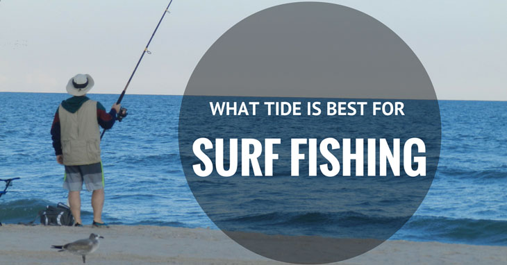 When (Time, Year, Moon, Weather) to go Surf Fishing?
