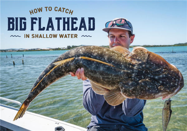 How to Catch Big Flathead in Shallow Water